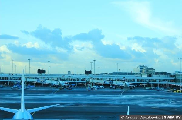 Авиакомпания KLM, Амстердам аэропорт Схипхол, блог Swim.by