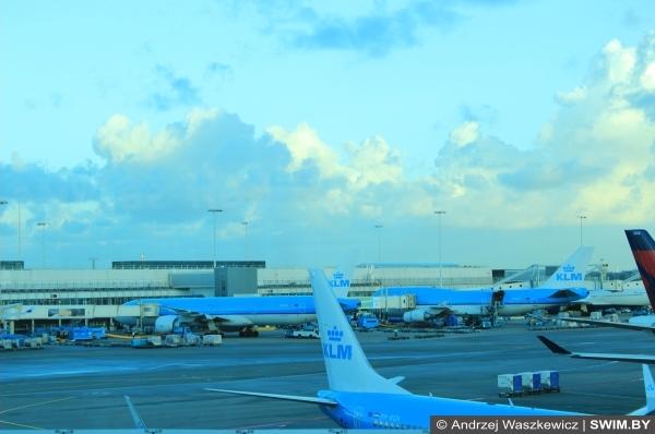 Голландские Авиалинии KLM, Амстердам аэропорт Схипхол, блог Swim.by
