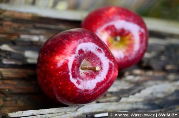 Яблоки, apples, вред яблок