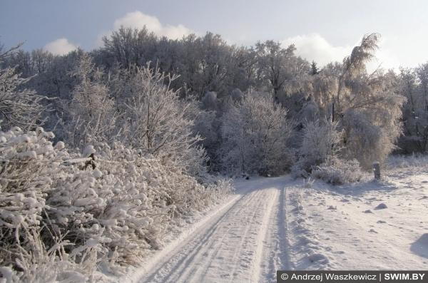 Бег зимой, пробежки, running, Анджей Вашкевич