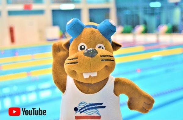Belarus Swimming YouTube Channel, Belarus Swimming Videos, www.swim.by, Плавание Беларуси YouTube Канал, Belarusian Swimming YouTube, Swimming Belarus YouTube Channel, Swim.by