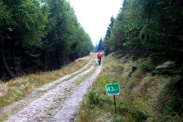 Велосипедный «Bieg Piastów 2016», велосипед, Bieg Piastów