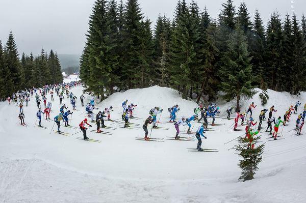 Bieg Piastów Skiing Marathon 2019, www.swim.by, Bieg Piastów, Worldloppet Skiing Marathon, Swim.by