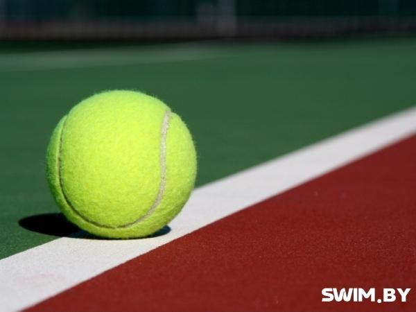 Кубок Дэвиса Беларусь 2017, Davis Cup Belarus 2017, Swim.by