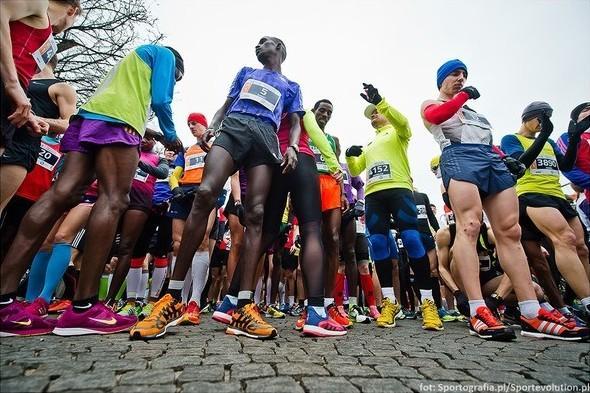 Gdynia Half Marathon, Gdynia Półmaraton, полумарафон в Гдыне