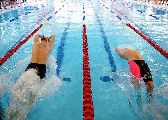 Grand Prix Bruntal 2016, турнир по плаванию в Чехии