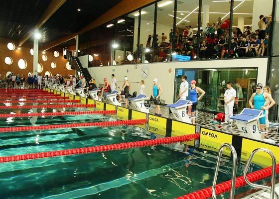 Гран-при Польши по плаванию «Opole-2016», соревнования по плаванию