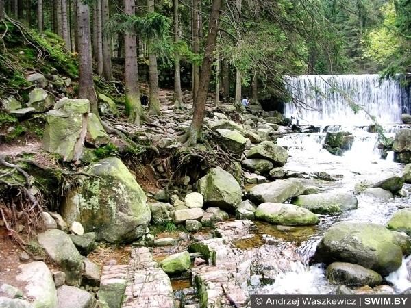 Лес, пейзаж, водопады