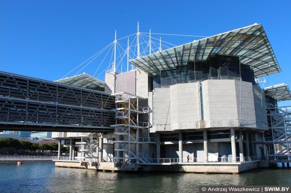 Lisbon Oceanarium, Лиссабонский океанариум