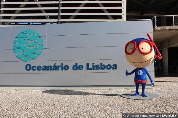 Лиссабонский океанариум в Португалии на Рождество и Новый год