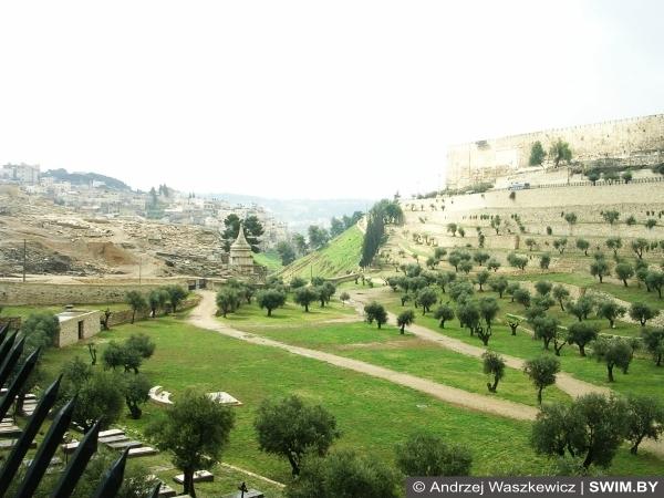 Масличная гора, Иерусалим, Израиль