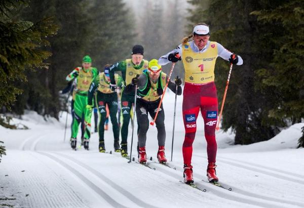 Masters Skiing, Bieg Piastow 2019, www.swim.by, Ski Masters, Bieg Piastow Marathon, Swim.by