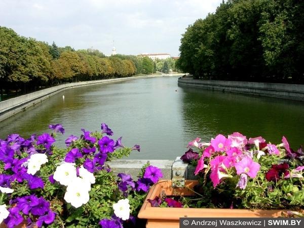 Minsk flowers, цветы Минска