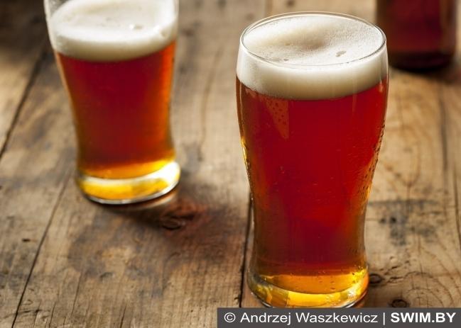 Польза пива, пиво и спорт