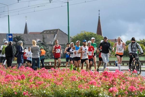 Марафон в Познани, Poznan Marathon