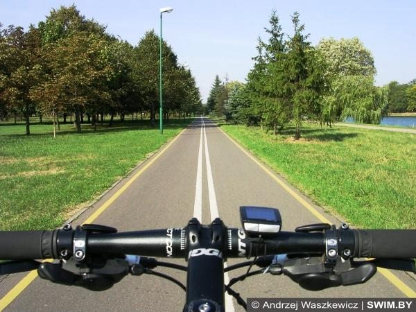 Track, road cycling
