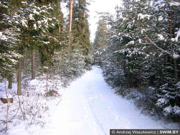 Тропа здоровья, зима