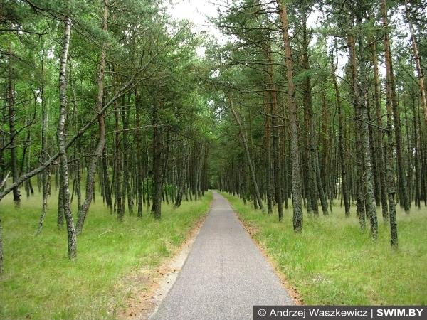 Велосипедный трек, Балтийский велотур