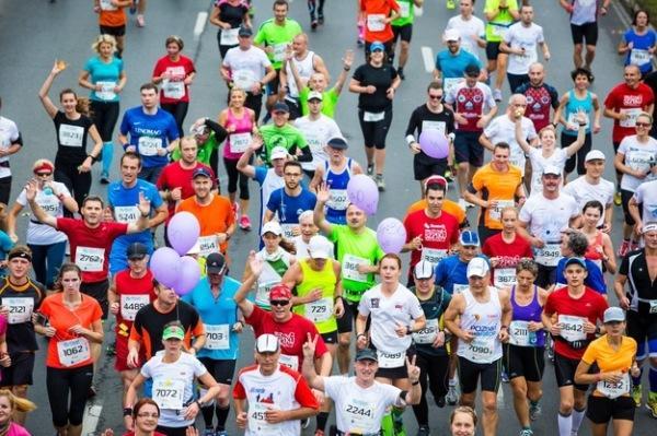 Вильнюс марафон, Вроцлав марафон, Таллинн марафон