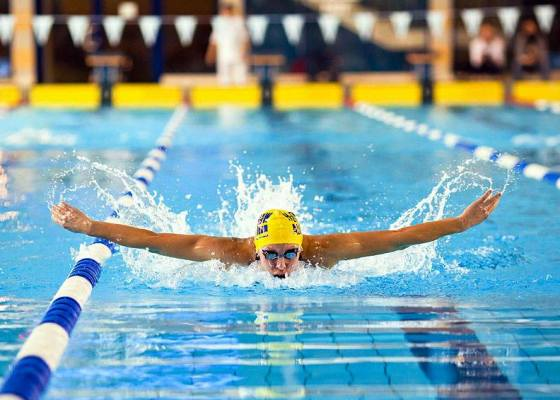Warsaw Masters Swimming Open, Чемпионат Варшавы по плаванию мастерс