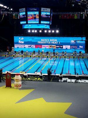 Чемпионат мира по плаванию на короткой воде 2016, Виндзор-2016, Канада, A.W. Sports Agency
